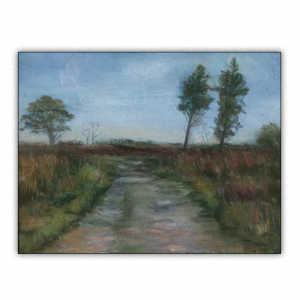 An old bog road in the Irish midlands