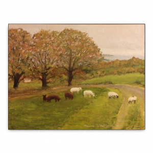 Sheep grazing at Spynans Hill beside a group of trees